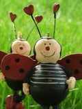 Ladybugs no amor 3 Fotografia de Stock Royalty Free