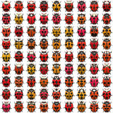 Ladybugs Pattern Stock Images