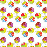 Ladybugs pattern and background isolated Royalty Free Stock Photography