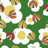 Ladybugs pattern Stock Images