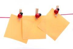 Ladybugs que llevan a cabo notas Foto de archivo libre de regalías