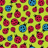 Ladybugs seamless background. Stock Photos