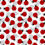 Ladybugs seamless texture Royalty Free Stock Photo