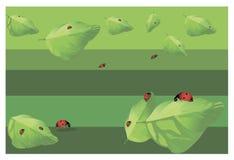 Ladybugs on the leaves stock illustration