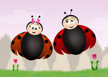 Ladybugs in spring. Illustration of ladybugs in spring Royalty Free Stock Photos