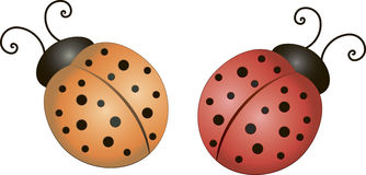 Ladybugs. Two red ladybugs vector clipart Stock Photography