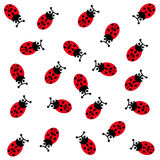 Ladybugs on white background. Vector illustration Stock Photography