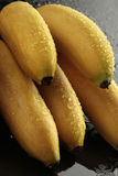 Ladyfinger bananas on black background. With waterdrops Royalty Free Stock Photo