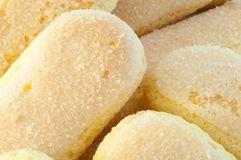 Ladyfingers cookies Stock Photography