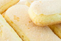 Ladyfingers cookies Stock Photos