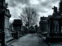 Laeken cemetery in Brussels royalty free stock photo