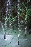 Lafarge sjöljus Fotografering för Bildbyråer