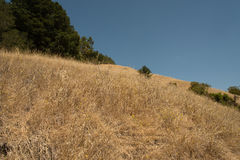 Lafayette Reservoir Recreational Area. Northern California Stock Image