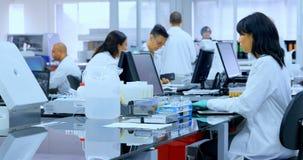 Lag av forskare som arbetar i laboratoriumet 4k stock video