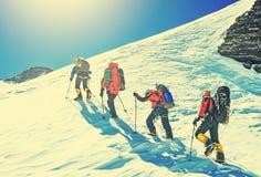 Lag av fyra alpinister som klättrar ett berg Royaltyfri Fotografi