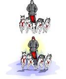 Lag av fyra sportslädehundkapplöpning med hund-chauffören Arkivfoto