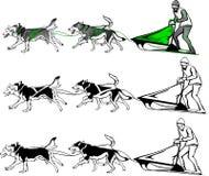 Lag av hundkapplöpning i olika alternativ Royaltyfri Illustrationer