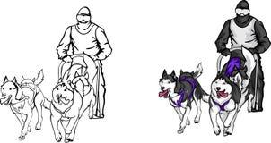 Lag av Siberian Huskies Royaltyfri Illustrationer