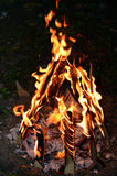 Lag Ba'Omer Jewish Holiday Bonfire Stock Image