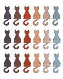 Lag för kattpälsfärg Arkivfoton