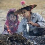 Laga mat en fisk - den Ngapali stranden - Myanmar Arkivbild