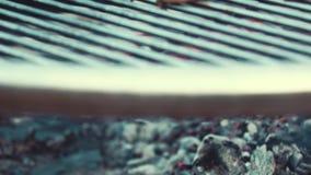 Laga mat för BBQ/som röker läckra saftiga köttbiffar och korvar på gallret arkivfilmer