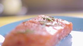 Laga mat förbereder laxen på gallret lager videofilmer