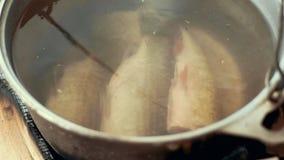 Laga mat fisksoppa i turist- kruka på brasan efter sommarfiske i floden arkivfilmer