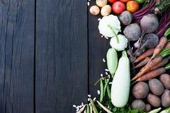 Laga mat grönsaksoppa, organisk vegetarisk kurs Detoxingredienser royaltyfri foto