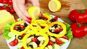 Laga mat hemlagad grönsaksallad med ägg för körsbärsröda tomater, ost- och vaktel lager videofilmer