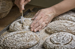 Laga mat hemlagat bröd för att baka Royaltyfria Foton