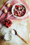 Laga mat kakan med nya ingredienser för att förbereda sig i matlagning ru Royaltyfri Bild