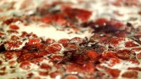 Laga mat läckert jordgubbedriftstopp stock video