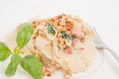 laga mat med grädde pastasås Royaltyfri Foto