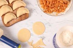 Laga mat nationella ukrainska klimpar med kål hemma royaltyfria bilder