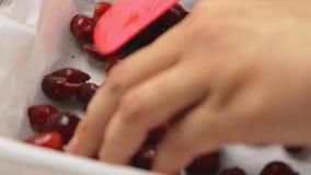 Laga mat och göra den körsbärsröda kakan arkivfilmer