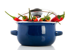 laga mat som är kryddigt Arkivfoto