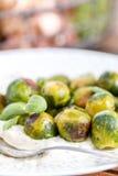 Lagad mat Bryssel groddar och puré Royaltyfria Bilder