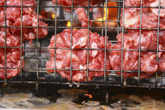 Lagad mat grillad Meat Arkivbild