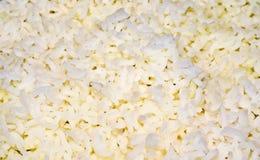 lagad mat kornricewhite Arkivbild