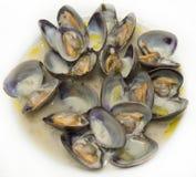Lagad mat mussla Arkivbilder