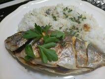 Lagad mat och kryddad havsbraxen och fluffiga varma ris Royaltyfri Fotografi