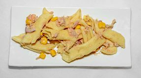 Lagad mat pasta med den röda löken, tonfisk och havre, vit platta Fotografering för Bildbyråer