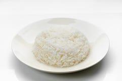 lagad mat rice Royaltyfria Foton