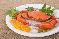 Lagade mat hela krabbor Royaltyfri Foto