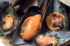 lagade mat nya musslor Royaltyfri Fotografi