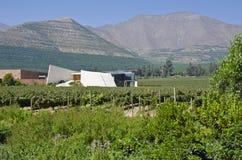 Lagar y viñedo en el valle Chile #5 de Aconcagua imagen de archivo