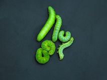 Lagartas verdes Imagens de Stock Royalty Free