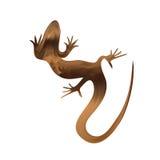 Lagarto de arena hermoso, silueta del lagarto Vector Imágenes de archivo libres de regalías