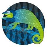 Lagarto del camaleón de la historieta, imagen en el círculo aislado en el fondo blanco Imagenes de archivo